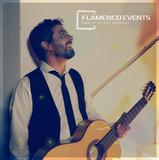 GUITARRISTA FLAMENCO PROFESIONAL - foto