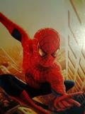PelÍcula spider-man vhs - foto