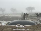 Biodigestor para purines Biotanq - foto
