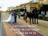 COCHE CABALLOS PARA BODAS Y COMUNIONES - foto