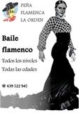 CLASES DE BAILE FLAMENCO - foto