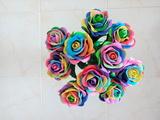 Rosas multicolor - foto