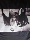 Camiseta kárate-toro. Oyama - foto
