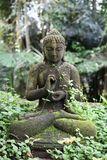 Tarot Buda (Renacimiento Espiritual) - foto