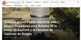 BAYCONT COLLARES SILICONA - foto