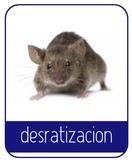 Control de roedores e insectos - foto