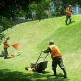 mantenimiento de jardinería  chalets - foto