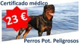 OFERTA Psicotéccnico Perros Peligrosos - foto