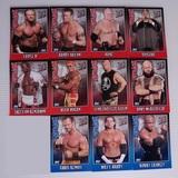 Cromos WWE 2006 - TOPPS - foto
