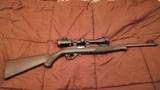 Rifle Semiautomático Calibre 22 - foto