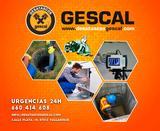 Desatascos_valladolid_Gescal - foto