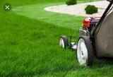 Jardinero en chiclana - foto