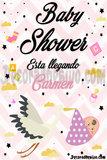 Lona Baby shower Niña - foto