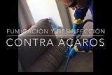 limpieza de tapizados profesional - foto