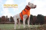 Chalecos / petos protección perros caza - foto