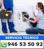 Servicio Garantizado en Vizcaya - foto