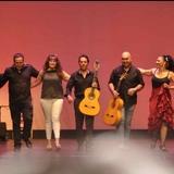 Flamenco en directo - foto
