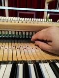 TÉCNICO afinador de pianos - foto