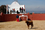 Mallorca, capeas para despedidas - foto