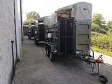 Remolques ganado caballos 750 kg - foto