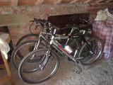 Bicicletas - foto