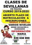 CLASES DE SEVILLANAS EN TOLEDO - foto
