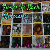 Flores de bach y minerales - foto