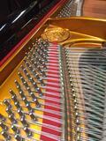 Piano Gran cola similar Steinway - foto