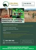 SERVICIOS JARDINERÍA Y FORESTALES - foto