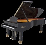 Pianos bluthner nuevos - foto