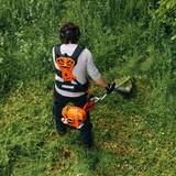 Jardineros - foto
