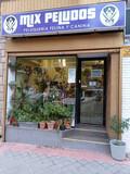 PELUQUERÍA CANINA EN MADRID - foto