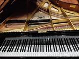 Afinación y Reparación Pianos Galicia - foto
