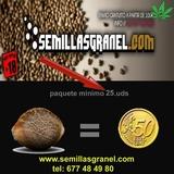 VISITA  WEB--> WWW ,  SEMILLASGRANEL , COM - foto