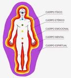 Terapias  naturales en Madrid - foto