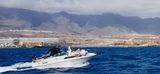 ALQUILER BARCO A MOTOR SEA RAY 230 - foto