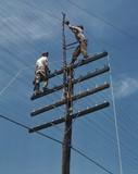 Electricista del barrio 93 444 9o9o - foto