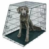 Jaula plegable perros- box de transporte - foto