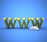Tu web con este precio ? - foto