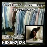 Servicios lavado y planchado - foto