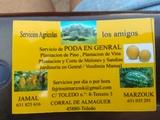 BUSCO TRABAJO DE AGRICULTURA:  - foto