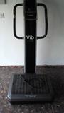 plataforma vibratoria BH - foto