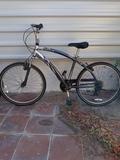 alquiler bicicleta - foto