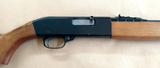 Carabina semiautomatica Winchester - foto