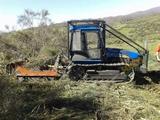 Trabajos forestales pedro. - foto