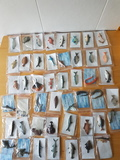 47 peces de asturias / poliresina - foto