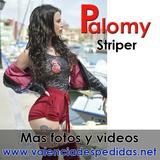 Striper Valencia - foto