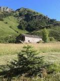 Casa cabaña - foto