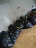 Reciclaje punto limpio - foto