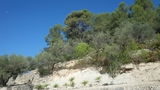 COLL DEL ALBA TORTOSA A 4.  5 N 340 Y AP7 - foto